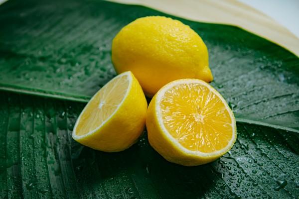 Zitronens-ure_Hauptbild